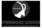 Steinbock Lodges Neukirchen am Grossvenediger